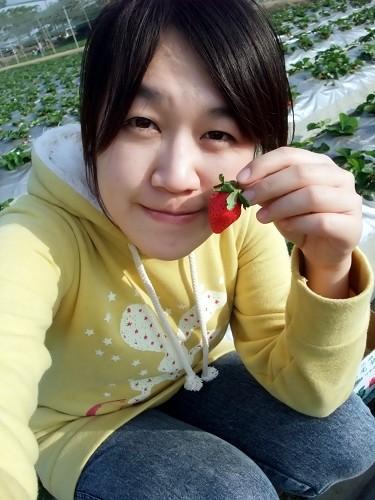 有人說我目的是來拍照不是採草莓的哈