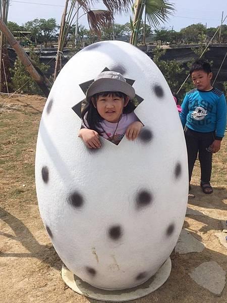 小雞蛋在恐龍蛋裡