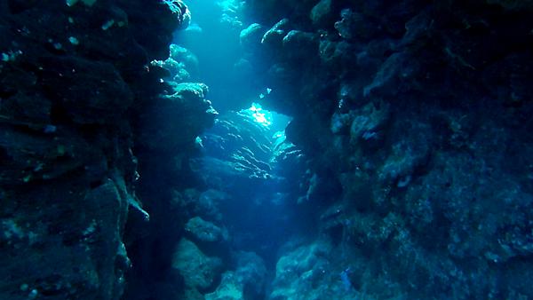 看了前面的影片突然很想學潛水
