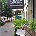小麥胚芽wheat germ
