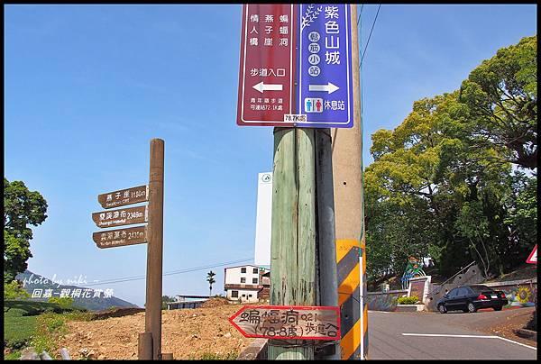 青年嶺&太和村茶園