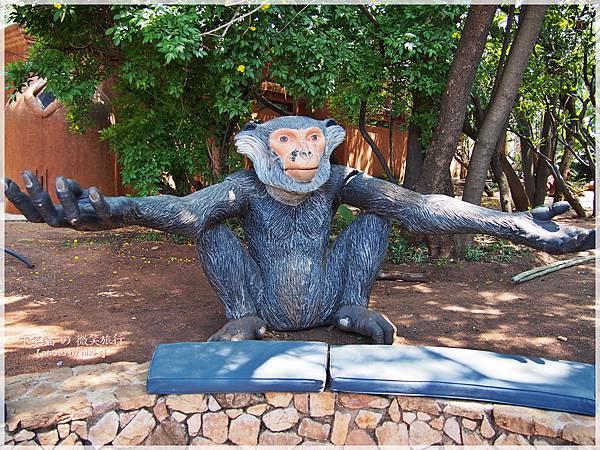monkey sanctuary猴子保護園區