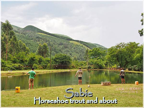 Sabie_Horseshoe trout and about