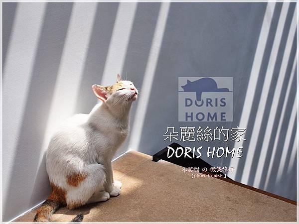 日月潭朵麗絲的家 DORIS HOME