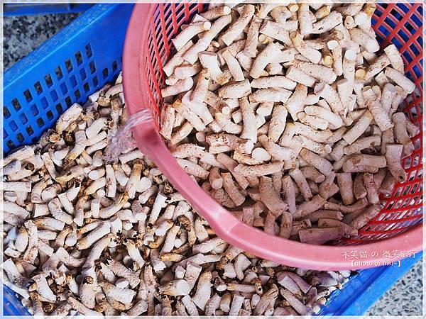 木成菇之鄉 (木成香菇批發零售)