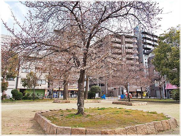 大阪麒森和宅