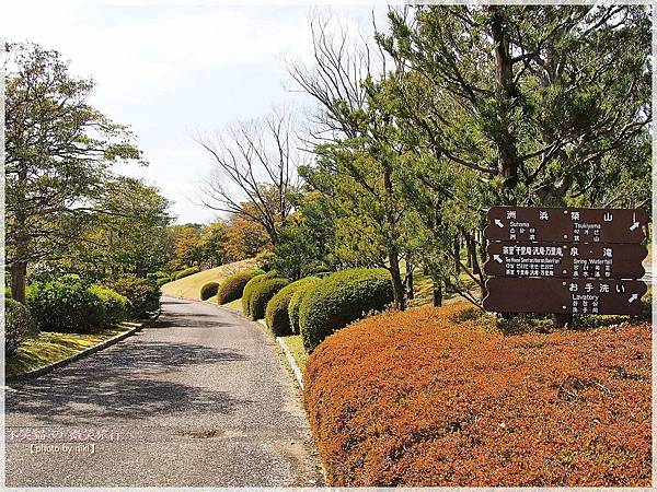 大阪萬博紀念公園日式庭園