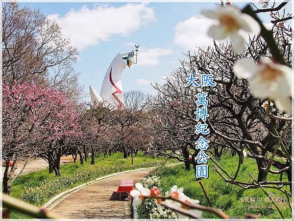大阪萬博紀念公園自然文化園.太陽塔百大賞櫻景點