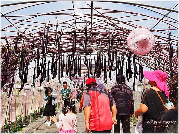 初春賞花旅遊_屏東熱帶農業博覽交通地圖、園區導覽