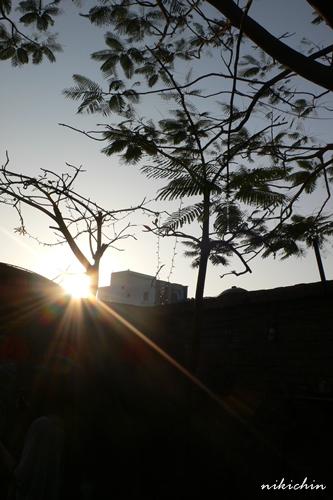 20110205_鹿港-5.jpg