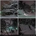 弘前雪燈籠-6會場道路.jpg