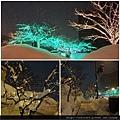 弘前雪燈籠-2下車處.jpg