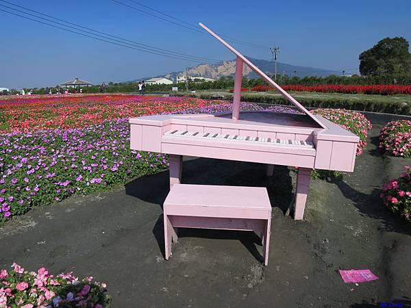 中社花海0314.JPG