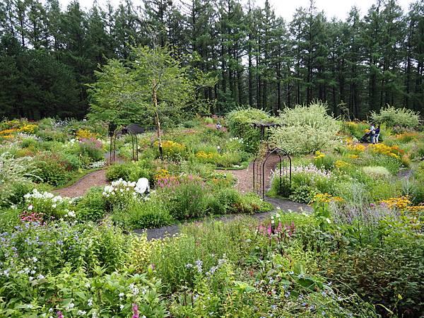 風的花園1166.jpg
