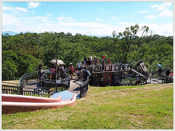 新竹的青青草原園區溜滑梯