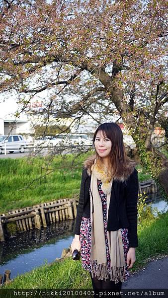 小江戶川越 (21).JPG