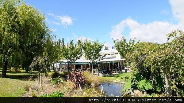 紐西蘭酒莊 (3).JPG