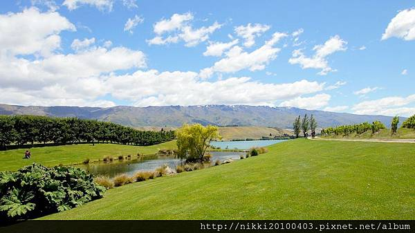 紐西蘭酒莊 (30).JPG
