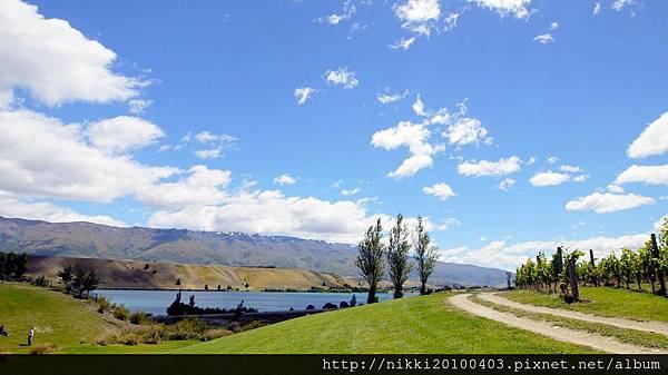 紐西蘭酒莊 (36).JPG