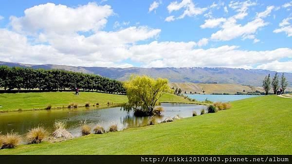 紐西蘭酒莊 (32).JPG