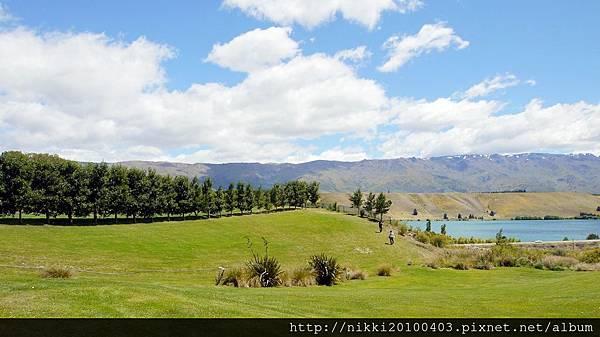 紐西蘭酒莊 (41).JPG