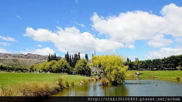 紐西蘭酒莊 (40).JPG