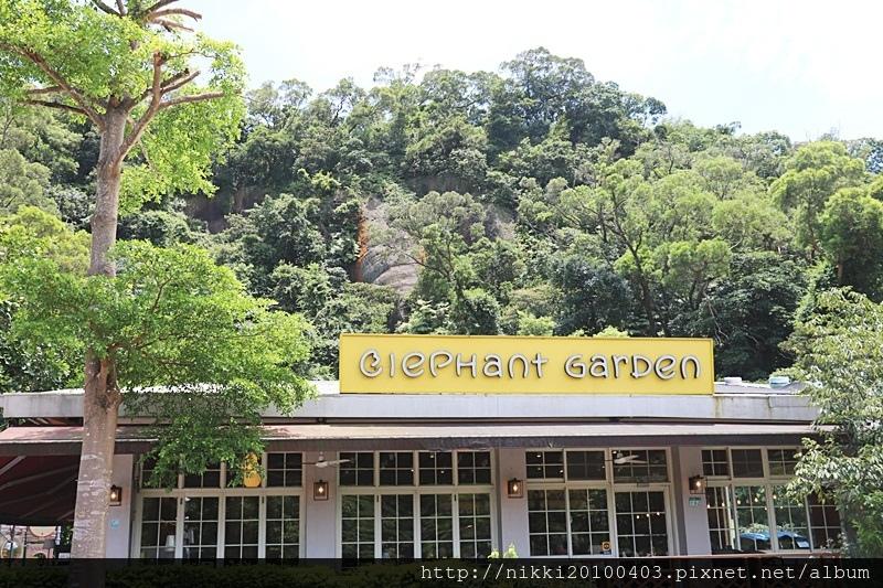 象園咖啡 elephant garden(內湖店) (5).JPG