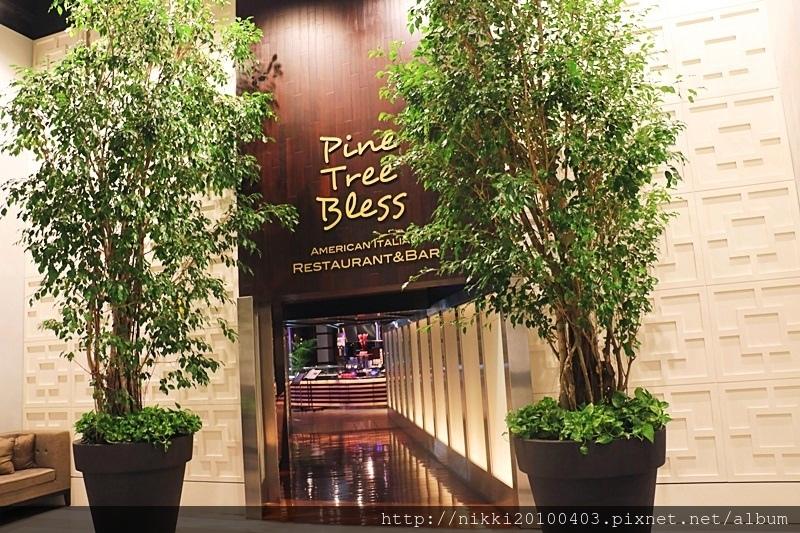 Pine Tree Bless (40).JPG