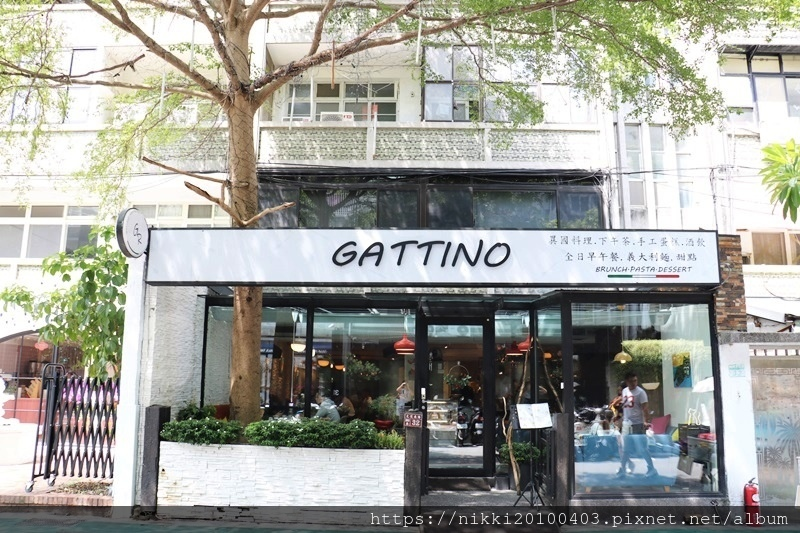 GATTINO (47).JPG