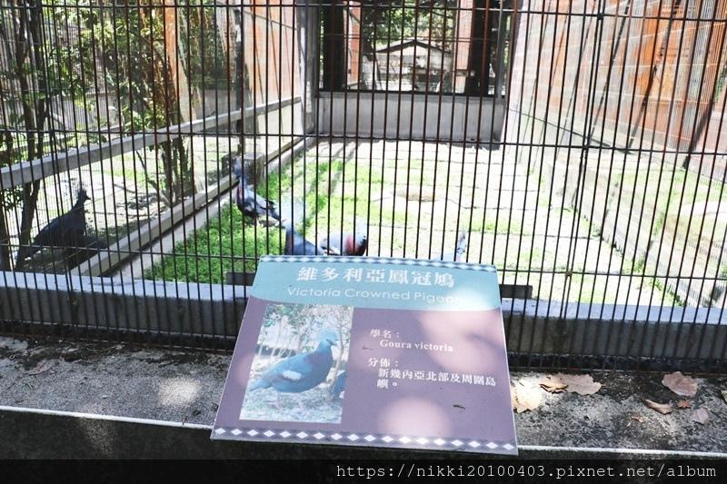 兆豐農場 (37).JPG