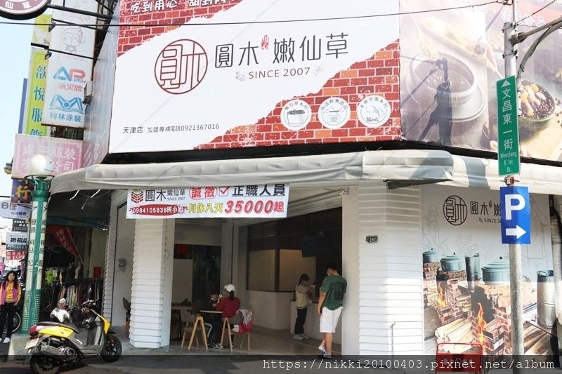 圓木嫩仙草 (1).JPG