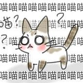 妮妮亂喵(6)