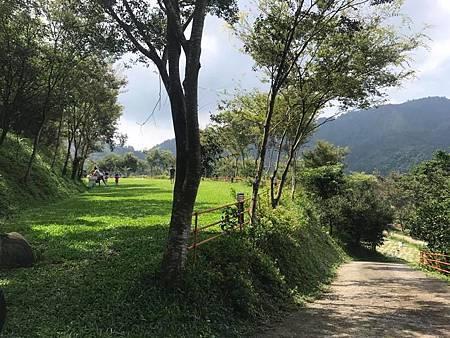 景庭露營區草地.jpg