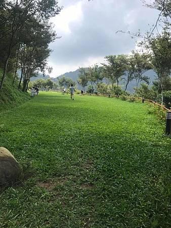 景庭草地.jpg