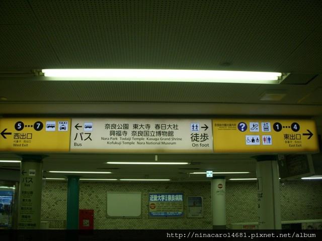 DSCN8838.JPG
