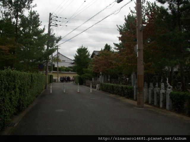 DSCN9365.JPG