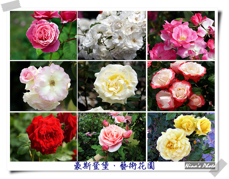 豪-玫瑰花園.jpg