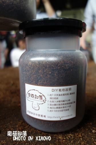 DSC03509.tsp .jpg