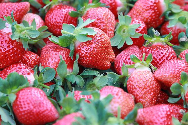 不及格草莓... 太甜了!!