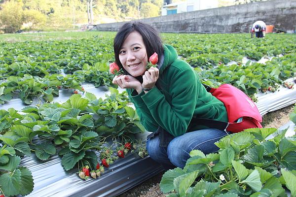 草莓甜,人更甜!