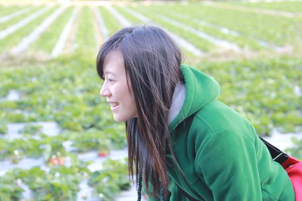 我還邊揹相機邊採草莓