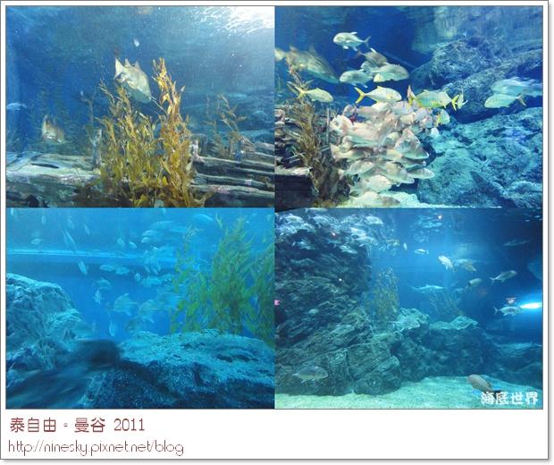 oceanworld4.jpg
