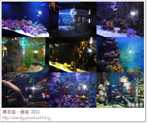 oceanworld9.jpg
