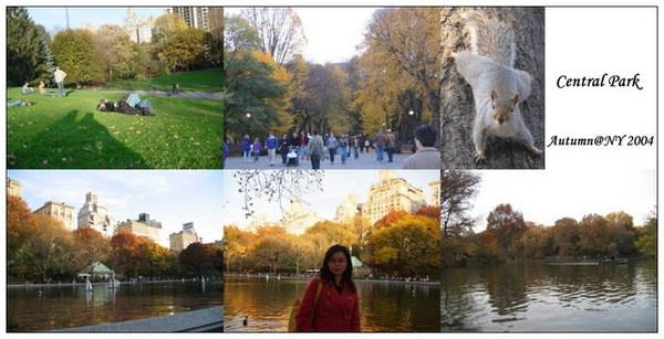 26-中央公園