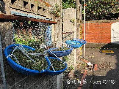 台北角落-3.jpg