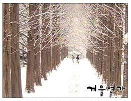 冬季戀歌.jpg