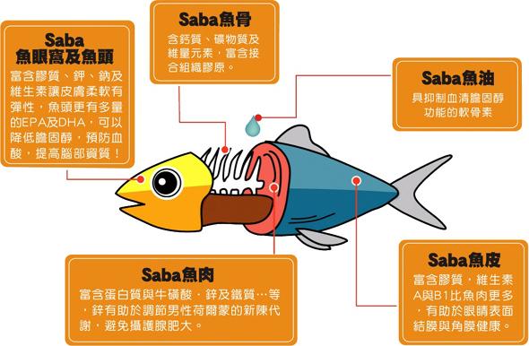 fish_08.jpg