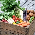 20110630 野菜BOX-thumb-500x696-118.jpg