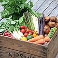 20110630 野菜BOX-thumb-500x696-118