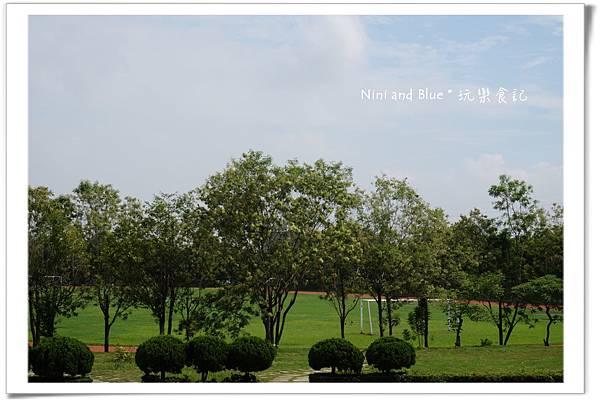 亞洲大學阿勃勒荷花13.jpg